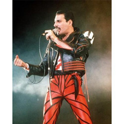 Freddie Mercury Queen Band Red And Black Arrow Jacket